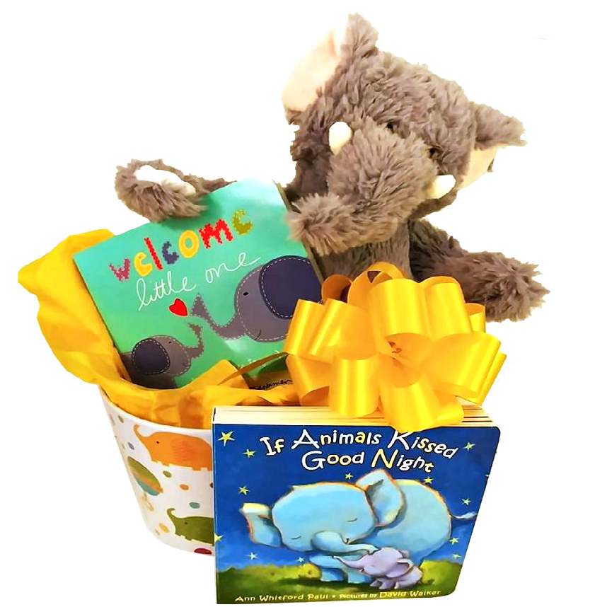 baby gift baskets and gifts